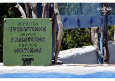 Question everything. Learn something. Answer nothing Ancient Greek Quotes, Wooden Signs With Sayings, Question Everything, Positivity, Hand Painted, This Or That Questions, Learning, Study, Teaching
