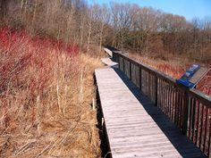 Boardwalk over looking the Turkey Point Marsh, in March. Great Places, Places To See, Ontario Travel, Canada Eh, Trail Maps, Fun Events, Norfolk, Beautiful Landscapes, Turkey