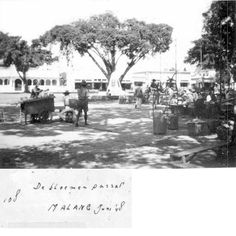 alun2 Malang, Old Pictures, Indie, Outdoor, Outdoors, Antique Photos, Old Photos, Outdoor Games, The Great Outdoors
