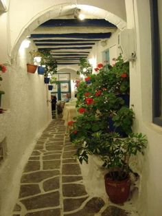 "Oh those narrow cobbled alleys….. just love strolling on them….  "" Naxos  ""  by Themistoklis on TBoH"