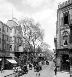Kamal Street, and Shepherd Hotel, Cairo 1900. شارع الكامل وفندق شيبرد القاهرة ١٩٠٠