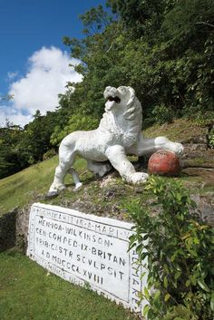 Lion at gun hill..carved out of the limestone rock by a British soldier in the 1700's or there abouts..A famous landmark!