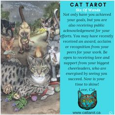 Monthly readings on my YouTube channel: www.youtube.com/c/cattarot Book your reading: www.cattarot.ca Love, Cat #tarot #tarotcards Achieve Your Goals, Tarot Cards, Cheerleading, Channel, Reading, Cats, Youtube, Books, Tarot Card Decks
