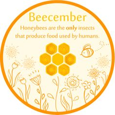 We offer an assortment of handmade pure beeswax candles with cotton wicks. Tea lights, votives, pillars and DIY candle kits. Bee Facts, Buzz Bee, Backyard Beekeeping, Bee Design, Save The Bees, Beeswax Candles, Bee Keeping, Queen Bees, Candle Making