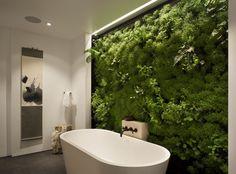 Pas besoin d'avoir un jardin pour profiter d'un peu de nature à son domicile. Les plantes prennent leurs quartiers dans des murs végétaux.