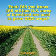 FACT: Did you know 165 million US acres of farmland are used to grow GMO crops? More here: www.gmoinside.org