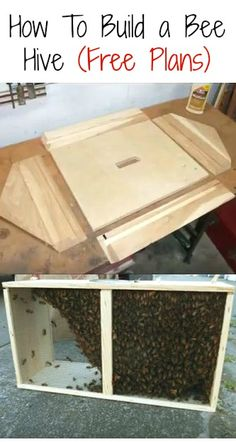 How To Build a Bee Hive - Free Plans: