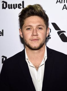 Niall Horan 2016  So he's back to being a brownie?!! Was fake blonde Niall just for One Direction and now that they aren't together anymore or?