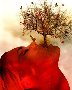 Fire and Ice by klisjee.deviantart.com  May my words take root and grow into the tree of life. May I take flight like the monarch and fly free through every challenge.