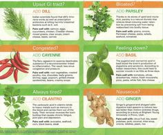 10 Herbs That Heal  How you may benefit from different natural herbs when you have different health issues. See how to pair them with other foods to increase their effect.