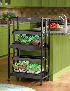 New From Ikea A Hydroponic Countertop Garden Kit Joshua 400 x 300