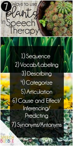 7 Ways to get nature into your sessions!  Working with sequence, vocabulary, describing, categorizing, articulation, cause/effect, and synonyms/antonyms are all possible using plants during speech therapy. #SLP #OT #SPED #classroom #therapy #school #outdoors #green