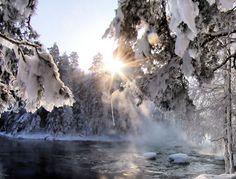 enjoy the sunlight by KariLiimatainen on DeviantArt
