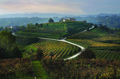 The 'Prosecco Road' is Italy's oldest wine route. it is 60km long and connects you with 120 wine producers.