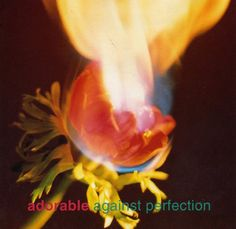 Artist: Adorable Album: Against Perfection Year: 1993 Title: A to Fade In Rock Music, My Music, The Psychedelic Furs, Echo And The Bunnymen, Only Song, Saint A, Dream Pop, Independent Music, Musica