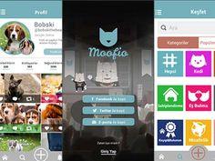 Ponçik seni kokladı: Karşınızda hayvanlar dünyasının yeni sosyal ağı Moofio Detaylar ajanimo.com'da.. #ajanimo #ajanbrian #hayvan #animal
