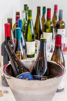 Wines for the Holiday