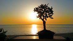 #vastomarina #sunrise #abruzzo #sea #relax #mare #sun #beach #stunning #colors #summer #adriatico #bestabruzzopics #sky #tag #amazing #nofilter #Italia #spiaggia #vivoabruzzo #bellezzainfinita #panorama #golfodivasto #costadeitrabocchi #italy #sunset #ilpontile #vastomarinabeach #spiaggiavastomarina #loves_abruzzo #caldo #newsabruzzo #luvast #relaxtime #sirenetta #summerparadise #bluesea #orizzonti #beatiful #travel #immobiliarecaserio #exclusiveproperty