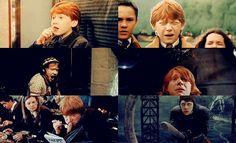 Ron..i'm Rollo shipper AHAHAHAHAHAH.