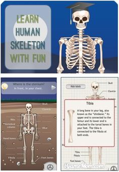 Learn about human skeleton with fun #kidsapps