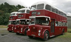 Three Leyland Titans  Edinburgh Corporation Buses
