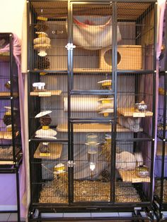 cage ideas for the ferrets, I would Love to get them a cage like this