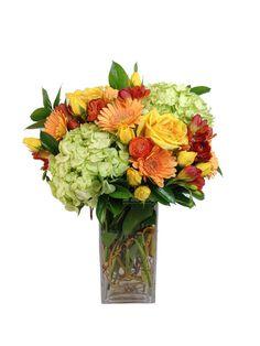 Roses, Gerber Daisy's, and Hydrangea $85