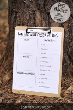Nature Walk Observations and Scavenger Hunt Printable Outdoor Scavenger Hunts, Nature Scavenger Hunts, Scavenger Hunt For Kids, Nature Hunt, Nature Study, Outdoor Education, Outdoor Learning, Nature Activities, Educational Activities