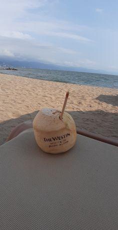 Coconut, Fruit, Sports, Destiny, Places, Hs Sports, Sport