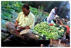 Dal Lake,Srinagar,Jammu and Kashmir,Floating market,Floating vegetable market,Floating vegetable market in Dal Lake,Dal Lake vegetable market,Incredible India,Indian Expedition,India Travel Guide