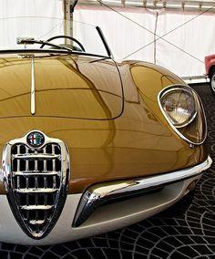 Classic Alfa Romeo – Cars is Art Maserati, Bugatti, Retro Cars, Vintage Cars, Top Vintage, Automobile, Alfa Romeo Cars, Alfa Cars, Citroen Ds