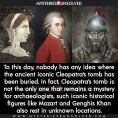 Wow Facts, Wtf Fun Facts, The More You Know, Did You Know, Interesting Facts About World, Amazing Facts, Whisper Quotes, Shocking Facts, Mystery Of History
