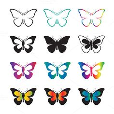 Vector group of butterfly  @creativework247
