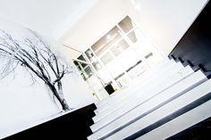 Aranżacja wnętrz nowoczesnych biur w Krakowie, projekt ekskluzywnej aranżacji wnętrz biur cechuje wiele szlachetnych materiałów jak kamień,marmur, lustra