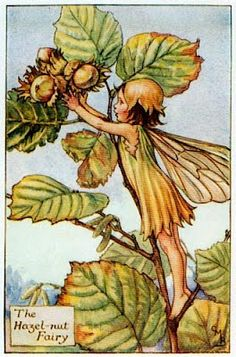 """Vintage print 'The Hazel-nut Fairy' by Cicely Mary Barker from """"The Book of the Flower Fairies""""; Poem and Pictures by Cicely Mary Barker, Published by Blackie & Son Limited, London [Flower Fairies - Autumn] Cicely Mary Barker, Flower Fairies, Fairy Land, Fairy Tales, Autumn Fairy, Vintage Fairies, Art And Illustration, Flower Illustrations, Faeries"""
