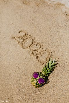 Cool pineapple wearing a purple sunglasses with a year 2020 word on the beach | premium image by rawpixel.com / Karolina / Kaboompics Palm Tree Drawing, Beach Drawing, Palm Tree Background, Beach Background, New Year Wishes Images, Pineapple Palm Tree, Christmas Gifts For Adults, Pineapple Wallpaper, Single Red Rose