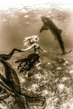 Shawn Heinrichs est un photographe amoureux de la plongée et surtout des requins baleines. Après les avoir pris dans tous les angles, il a réalisé un photoshoot avec des mannequins qui posaient à côté de ces géants de la mer.