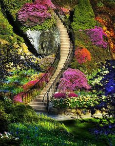 This is breathtaking!  Wonder what the view from above it like??   Butchart Gardens in Victoria, BC via Wildlife and Nature Photos FB