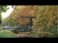▶ Colours of Nature: Autumn - Herfst - Herbst #11 - YouTube