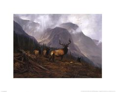 Bookcliffs Elk