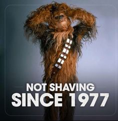 Beard memes and quotes - Krieg der Sterne - star wars Barba Grande, Beard Quotes, Beard Game, Beard Humor, Beard Grooming, Awesome Beards, Cosplay, Star Wars Humor, Beard Oil