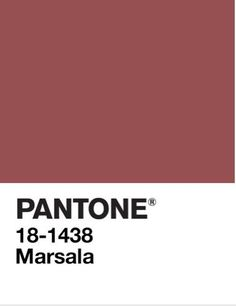 kolor Marsala na próbniku Pantone Color Of The Year, Marsala, Pantone Color, Terracotta, Interior Inspiration, Daughters, Garden Ideas, Ss, Palette