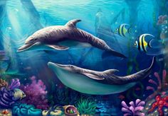Risultati immagini per dolphins art Dolphin Painting, Dolphin Art, Coral Wallpaper, Dolphin Photos, Mermaid Images, Underwater Fish, Bottlenose Dolphin, Beautiful Nature Wallpaper, Ocean Creatures