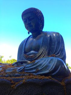 Only in Hawaii... Serene Buddha at Foster Garden