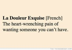 La douleur exquise the heart-wrenching pain of wanting someone you cant have I think we all have this feeling. Wanting Someone Quotes, Loving Someone You Can't Have, Words Quotes, Wise Words, Me Quotes, Sayings, Romance Quotes, Girl Quotes, Pretty Words