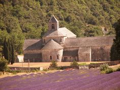 Abbe de Senaque is the post card of Provence. In spite of the crowds it is magical and is a working abbey of the Cistercian order