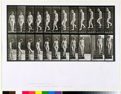Titolo dell'immagine : Eadweard Muybridge - Woman descending steps, plate 137 from ''Animal Locomotion'', 1887 (b/w photo)