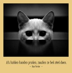 #citaten #Porter #katten Taal quote week 38-2013 -- Tekstbureau Van Ginneken