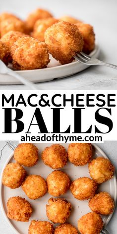 Easy To Make Appetizers, Yummy Appetizers, Appetizer Recipes, Mac And Cheese Bites, Creamy Mac And Cheese, Starter Food, Fried Macaroni And Cheese, Deep Fried Recipes, Low Carb Grocery
