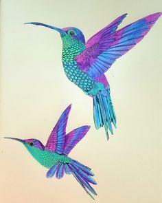 Birdtopia by Daisy Fletcher. Coloured by Wendy Perry Hummingbird Wallpaper, Hummingbird Painting, Hummingbird Tattoo, Pretty Birds, Beautiful Birds, Buddha Tattoo Design, Hummingbird Pictures, Colored Pencil Artwork, Fabric Postcards